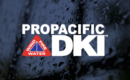 Join the team at Pro Pacific DKI