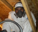 Mould remediation expert wearing proper safety gear